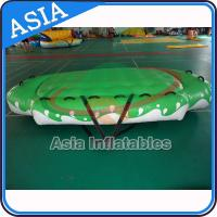 Quality 3.3m X 2.1m Digital Printing UFO Inflatable Water Boat Customized Color wholesale