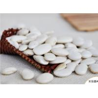 Buy cheap 2016 new crop white kidney beans/haricot for sale from Wholesalers
