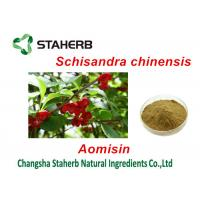 Buy cheap Magnolia Vine Fruit Antibacterial Plant Extracts , Herbal Extract Powder from wholesalers