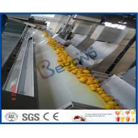 Buy cheap Orange Juice Factory Orange Juice Processing Plant With Juice Extraction Equipment from Wholesalers