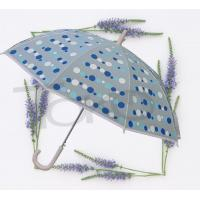 Large Kids See Through Umbrella Plastic Transparent Fabric White Metal Frame