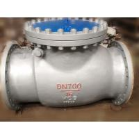 DIN Swing Renewable Seat Check Valve B7 / 2H Reinforced PTFE SS Spiral Wound Graphite