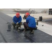 Buy cheap Torched Bitumen Membrane from Wholesalers