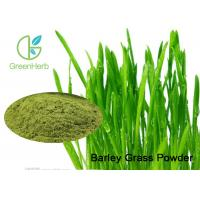 Buy cheap Green Natural Barley Grass Powder / Hordeum Vulgare L For Anti - Aging from Wholesalers