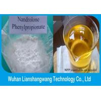 Quality Nandrolone Phenylpropionate / NPP CAS 62-90-8 Muscle Building Steroid White Powder wholesale