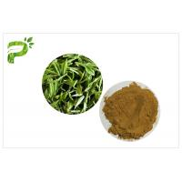 Buy cheap Green Tea Polyphenols Plant Extract Powder 95% For Dietary Supplement Weight Loss from Wholesalers