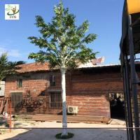 Buy cheap UVG 20 foot tall synthetic trees artificial ornamental trees with banyan branches best gift for engineers GRE067 from Wholesalers