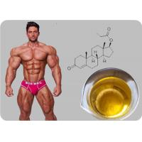 Quality Testosterone Propionate Oil - based Injectable Testosterone Steroid Powder wholesale