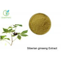 Buy cheap Brown Powder Natural Plant Extracts / Siberian Ginseng Root Extract Anti - Fatigue from Wholesalers