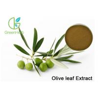 Brown Plant Extract Powder , Organic Olive Leaf Extract With 20% Oleuropein Powder Regulate Immunity