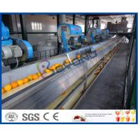 Quality Full Automatic Engery saving Orange Processing Line for Turn Key Project for sale