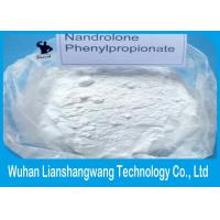 Buy cheap CAS 62-90-8 Nandrolone Phenylpropionate / NPP White Powder Steroid for Muscle Building from Wholesalers