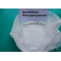 Buy cheap 62-90-8 Nandrolone Phenylpropionate / Deca Durabolin Injection For Bodybuilding from Wholesalers