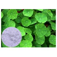 Buy cheap Anti Inflammatory Gotu Kola Leaf Extract , Natural Centella Asiatica Leaf Extract from Wholesalers