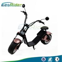 Quality LCD screen 1000W Power 2 Wheel Electric Scooter with CE mark mirror , 50KM Max Speed wholesale