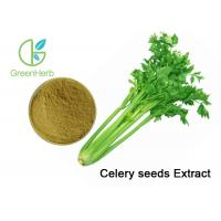 Buy cheap Professioanl Vegetable Extract Powder Celery Seed Extract Brown Yellow Powder from wholesalers