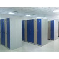 Buy cheap Single Tier Lockers PVC Material , Gray Cabinet Commercial Gym Lockers from wholesalers