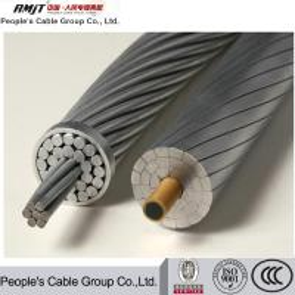 Quality RMJT hot selling Bare Aluminum ACSR/Aw Acar Aasc ACSR AAAC AAC Conductor for sale