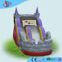 Buy cheap Children Inflatable Dry Slides Outdoor Commercial Inflatable Slide from Wholesalers