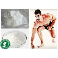 99.6% Purity Nandrolone Steroid Nandrolone Undecylate for Bodybuilder Supplement CAS:862-89-5
