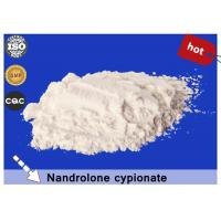 Quality White Powder Raw Steroid Nandrolone Cypionate CAS 601-63-8 for Bodybuilding wholesale