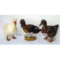 Buy cheap DU0002 from Wholesalers