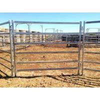 Buy cheap Galvanized Steel Horse Fence Panel from wholesalers