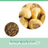 Buy cheap Maca Powder dried black maca root list of medicinal plants and herbs from Wholesalers