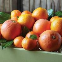 Buy cheap CITRUS MEDLEY NO.38 deliver gift hamper to shenzhen from Wholesalers
