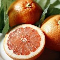 Buy cheap SUGAR RED GRAPEFRUIT NO.35 deliver gift hamper to shenzhen from Wholesalers