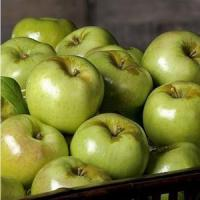 Buy cheap GREEN APPLES NO.33 deliver gift hamper to shenzhen from Wholesalers