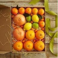 Buy cheap Simply Fresh Winter Citrus NO.2 shenzhen gift hamper delivery from Wholesalers