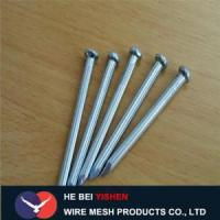 Hot-dipped galvanized steel concrete nails sale