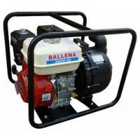 Buy cheap Gasoline Pump Product Name:Gasoline Chemical Pump from wholesalers