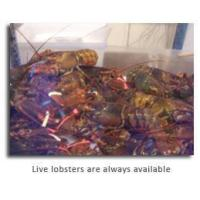 Buy cheap Shellfish from Wholesalers