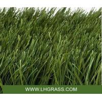 Buy cheap FOOTBALL &SOCCER GRASS ROYAL from Wholesalers
