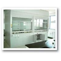 Buy cheap English CWP-III conjunct fume hood from Wholesalers