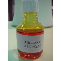 Buy cheap Pesticides Trifluralin 480gl EC from Wholesalers