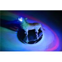 Buy cheap solar wolf from Wholesalers