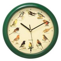 Buy cheap Advertising Plastic Birds Wall Clock Green PS0020C from wholesalers