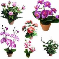 Potted Small Orchid,Artificial Flower